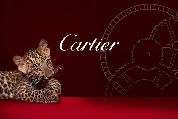 Formacion personalizada in company estrategia lujo cartier España