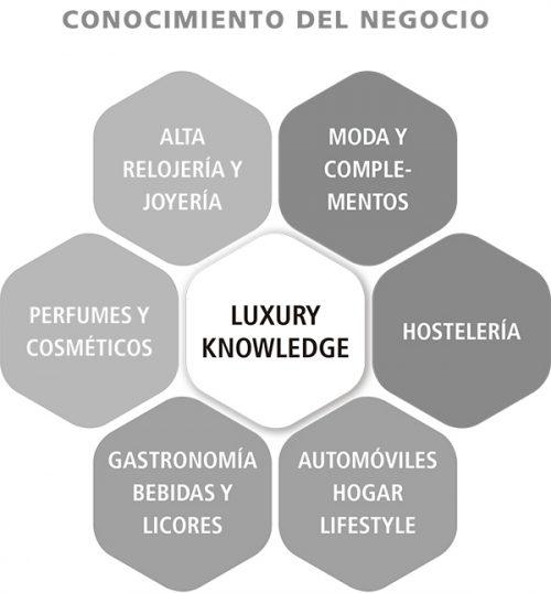 Luxury Advise conocimiento del sector Lujo